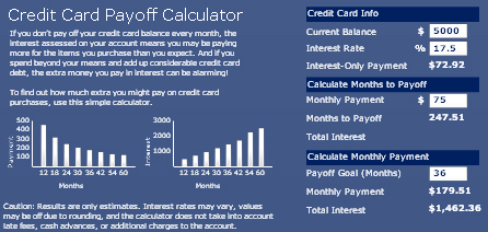 Credit Card Payoff Calculator using Crystal Xcelsius – MyXcelsius.Com